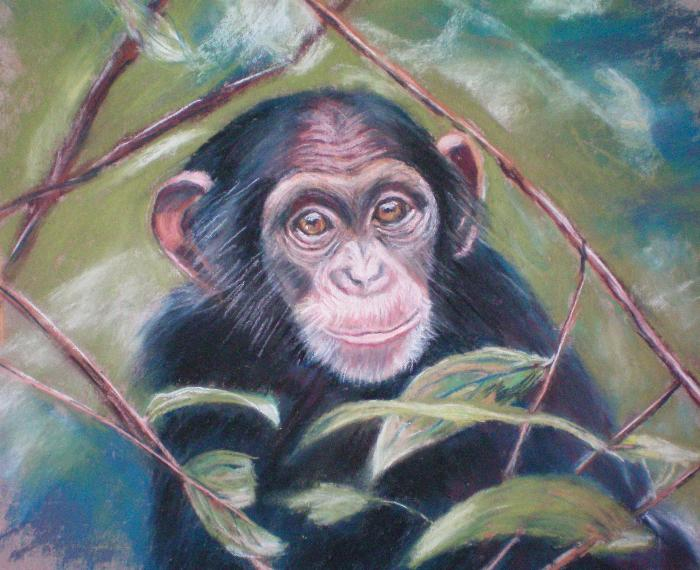 Yessy Gt Cathy Geib Gt Monkey See Baby Painting